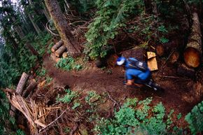 The Cascades are filled with beautiful and challenging mountain biking trails.