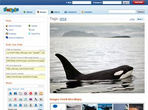 After you upload content, TinyPic presents link codes so you can share images or video with friends via numerous Web-based tools and popular Web sites such as Facebook.