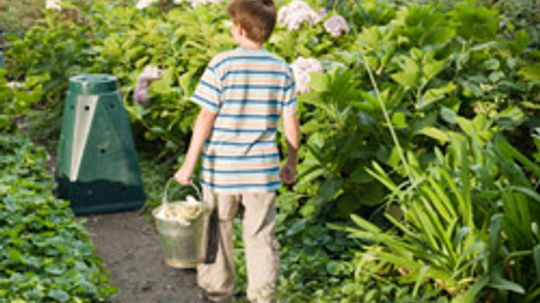 10 Tips for Composting in the City