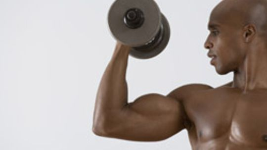 5 Tips on How to Get Big Arms