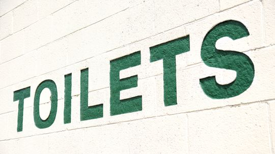 Toilets: The Past and Future of the Flush