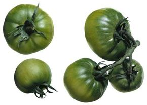 """Tomatillo means """"little tomato"""" in Spanish. See more pictures of tomatillos."""
