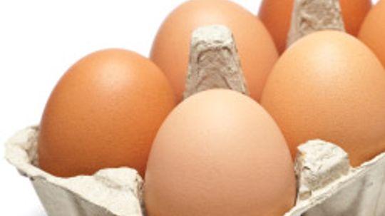 Top 5 Egg Tips