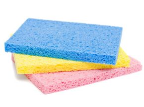 These will do, though there are some high-tech sponges on the market these days.