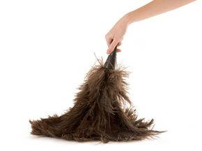 Dusters made of ostrich feathers naturally trap particulates in their weaves.