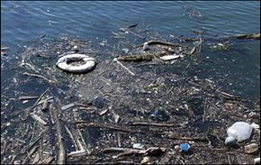 Pollution has a major effect on the health of marine habitats.