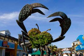 A giant crab greets you at Pier 39, Fisherman's Wharf.