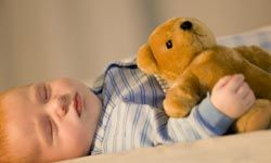 Teddy bears provide comfort and softness, and are often a child's first toy.