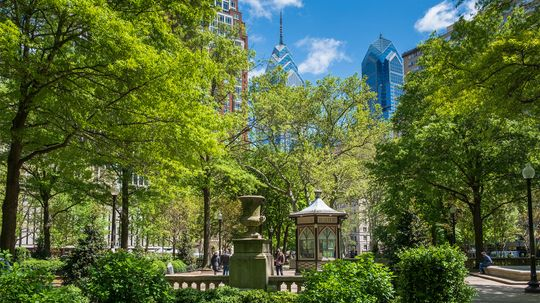 What Is Your City's Tree Equity Score?