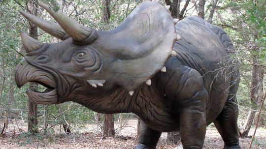 Triceratops: Facts About the Life and Times of a Three-horned Dinosaur
