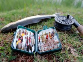 A rainbow trout fishing rod and selection of flies used for flyfishing. Mpumalanga, South Africa