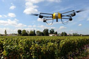 A UAV flies over a vineyard in Bordeaux, France; it is equipped with an infrared camera to determine the optimal maturity of the grapes, allowing them to be harvested at different times.