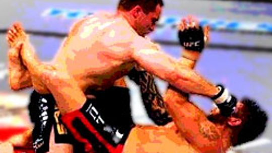 How the Ultimate Fighting Championship Works
