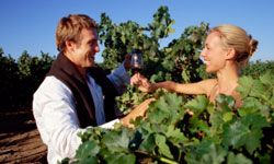 Touring a vineyard can be extremely romantic.