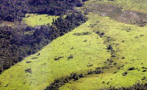 The Anapu region in Northern Brazil shows the effects of deforestation in April 2005. Uncontacted tribes are retreating further into the diminishing forest to preserve their culture and protect their health.