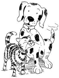 Our pets are an important part of our lives.