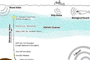 In 1996, NOAA's PMEL laboratory developed portable hydrophones to augment fixed listening devices in the ocean. These are used to locate the sources of sound undersea.