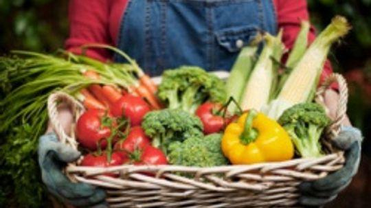 USDA Vegetable Guidelines