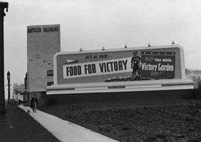 """During World War II, the U.S. government urged people to turn their yards into """"victory gardens"""" to help the war effort."""