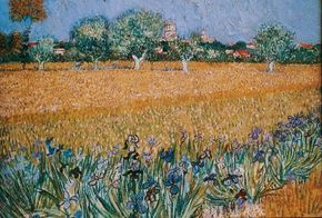 Vincent van Gogh's Field of Flowers near Arles is an oil on canvas (21-1/4x25-1/2 inches) that is housed in the Van Gogh Museum in Amsterdam.