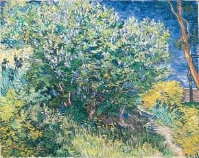 Vincent van Gogh's Lilacs (oil on canvas, 28-3/4x 36-1/4 inches) can be seen at Hermitage, St. Petersburg.