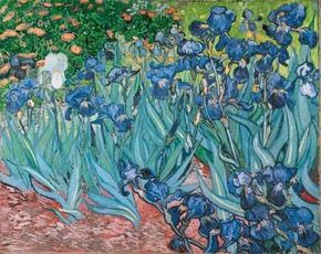Irises was one of the paintings Vincent van Gogh depicting the grounds of the asylum in Saint-Rémy. See more pictures of van Gogh's paintings.