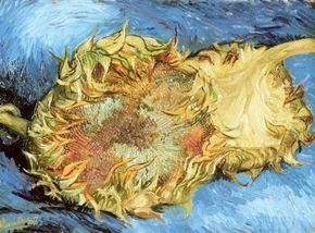 Vincent van Gogh's Two Cut Sunflowers is an oil on canvas (17 x 24 inches) that is housed in the Metropolitan Museum of Art in New York.