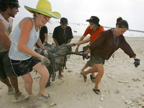 Volunteers help with post-tsunami cleanupin Thailand.