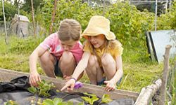 If you want to give your children a healthy appreciation for vegetables, have them plant a garden.