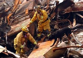 A search-and-rescue team working at ground zero