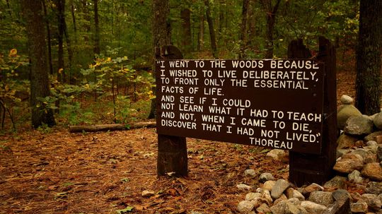 What Is Transcendentalism and How Did It Change America?