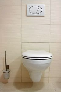 Button-flush toilets like this one with settings for full flushes and half flushes are already popular in several parts of Europe where water is more expensive.