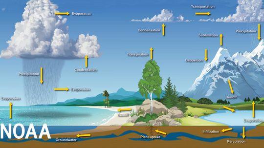 """以下是气候危机如何影响水循环""""border="""