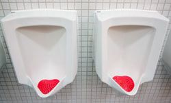 Controlling odor was actually one of the main problems in the development process of waterless urinals.