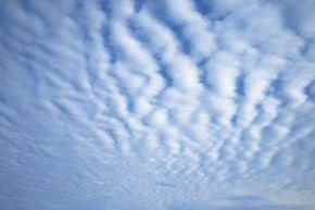 Nothing but mackerel skies!