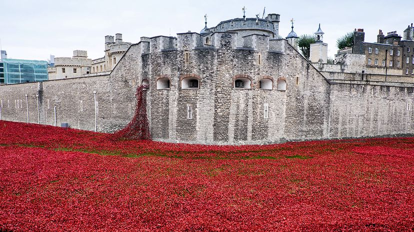 poppy sculpture at Tower of London