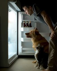 Make smart choices when you're rummaging for that late-night snack.