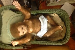 Esau, the baby Bigfoot, can be seen at the International Cryptozoology Museum.