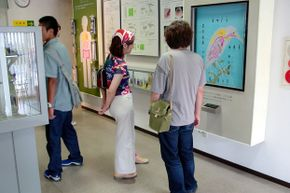 Surprisingly, the Meguro Parasitological Museum in Tokyo is a popular spot to take a date.