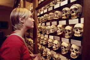 A woman looks at a display of skulls at the Mutter Museum in Philadelphia.