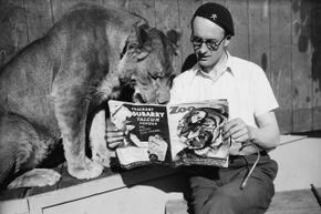 A wall of death rider reads Zoo magazine with a lioness. Think that's strange? This list gets even weirder.