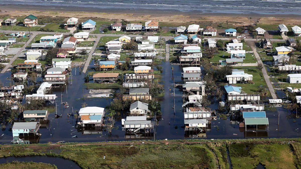沿岸湿地は、暴風雨による洪水に対する自然の「無料」の解決策です