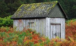 A shed can take up prime real estate on your property.