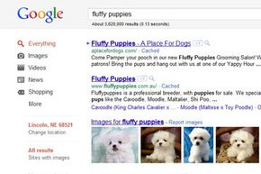 Google got big because it's good. No matter what you're looking for (including fluffy puppies), Google can help you find it -- fast.