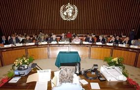 Session of the 112th Executive Board, May 2003