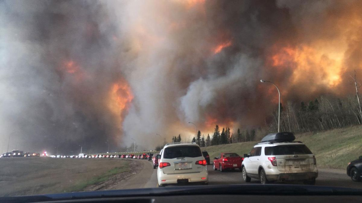 山火事の煙はどれほど危険ですか?毒物学者は危険信号を上げています