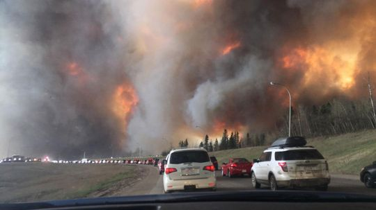How Dangerous Is Wildfire Smoke? A Toxicologist Is Raising Red Flags