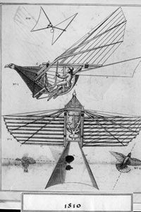 The first plane and glider designs had a lot of bird-like characteristics. Wind tunnels proved that many of those ideas were rather bird-brained.