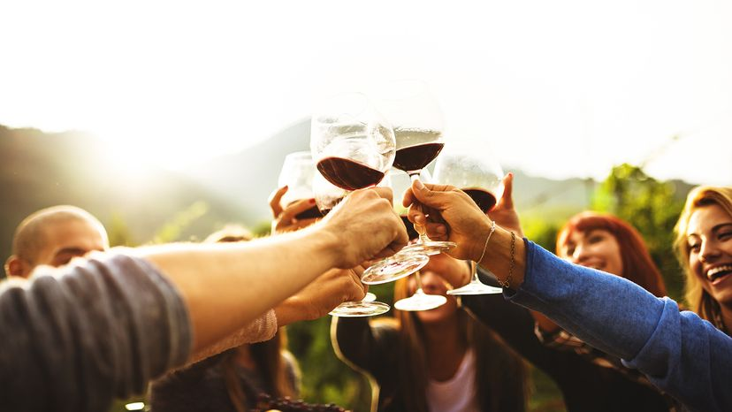 friends toasting with wine glasses