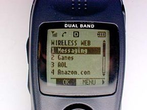 Wireless internet can be accessed through most PDAs.